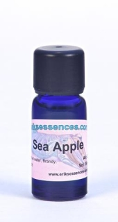 28 - Sea Apple