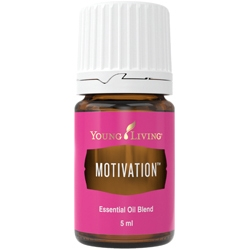 Motivation - motivace